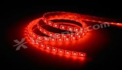 Acheter COLORTAPE6067, RUBAN LEDS IP67 CONTEST ARCHITECTURE