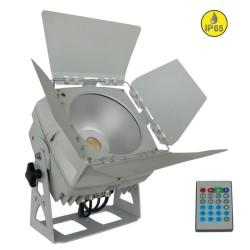 Acheter LDP COBWASH 100WW, ÉCLAIRAGE ARCHITECTURAL À LED BRITEQ