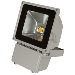 Acheter LDP-FLOOD80-WW, PROJECTEUR LED BRITEQ