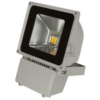Acheter LDP-FLOOD80-WW, PROJECTEUR LED BRITEQ au meilleur prix sur LEVENLY.com